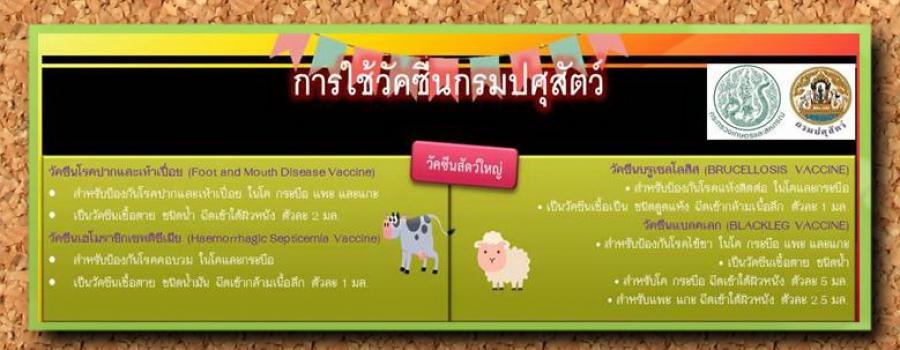 การใช้วัคซีนกรมปศุสัตว์
